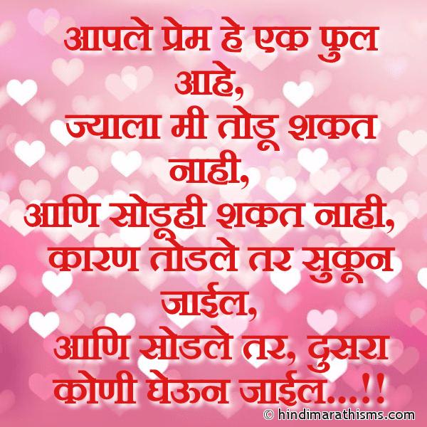 Aaple Prem He Ek Phul Aahe
