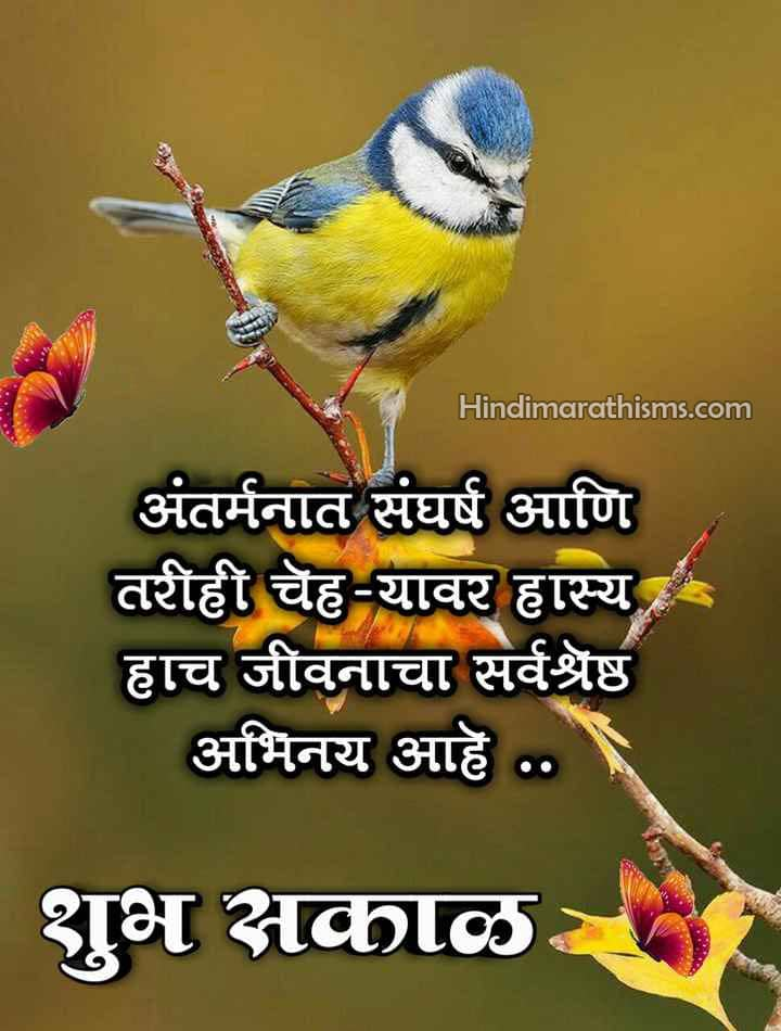 Hasya Shubh Sakal Image